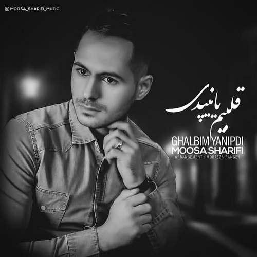 دانلود موزیک جدید موسی شریفی قلبیم یانیپدی