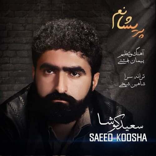 دانلود موزیک جدید سعید کوشا پریشانم