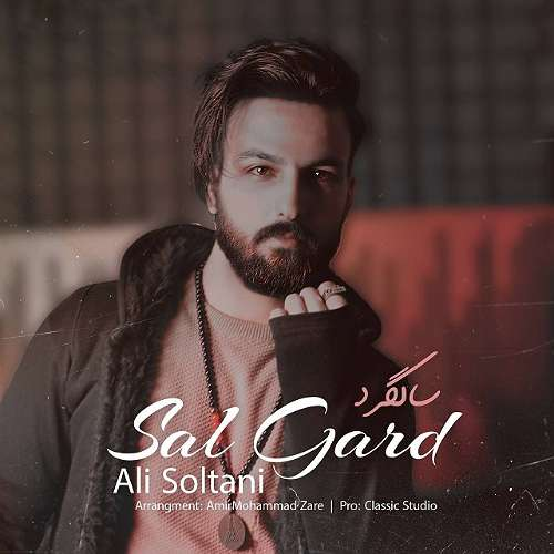 دانلود موزیک جدید علی سلطانی سالگرد